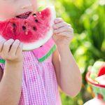 Der Ernährungsführerschein für Kinder