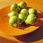 Das Vitaminlexikon – Vitalstoffe – wichtiger Bestandteil unserer Nahrung…
