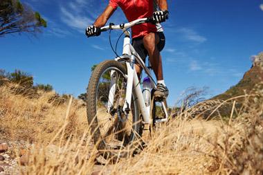 Über Stock und Stein: Mit dem Mountainbike sportlich unterwegs