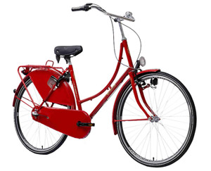 Citybike Karcher