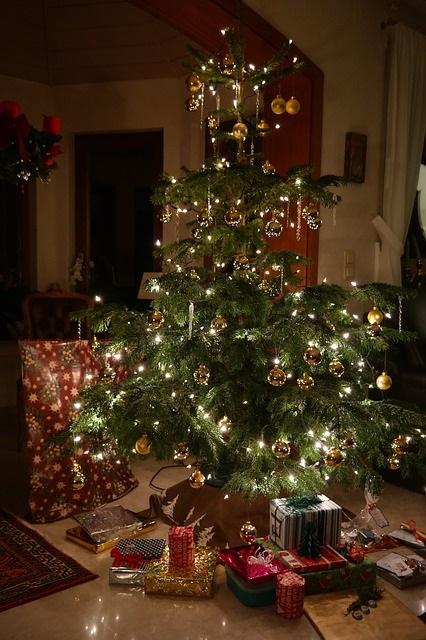 geschmückter weihnachtsbaum echt