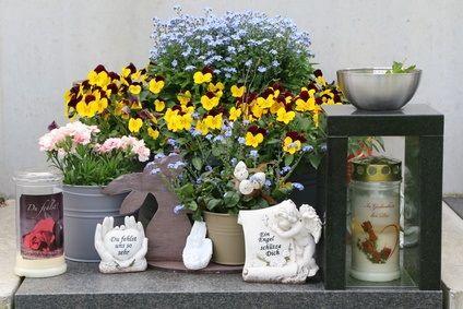 Blick auf ein Urnengrab mit Blumendekoration
