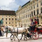 Städtetrip nach Wien: Was Sie in der Metropole unbedingt erleben sollten