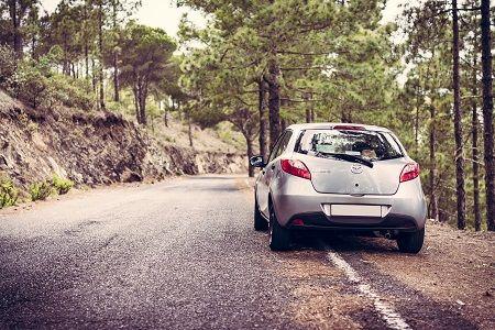 Auto steht am Straßenrand in einem Wald