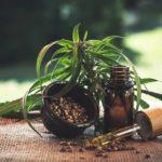 CBD – ein Mittel gegen viele Leiden