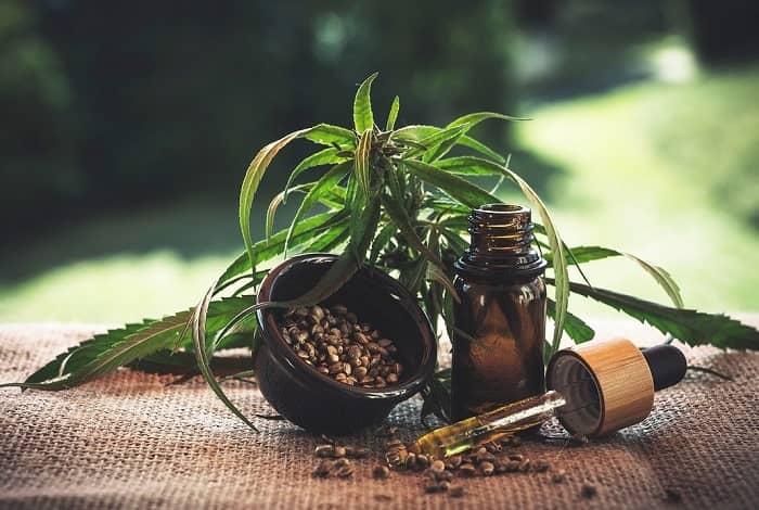 Eine kleine Hanfpflanze neben einer Pipette, einer Schale mit Tabletten und einem Fläschchen