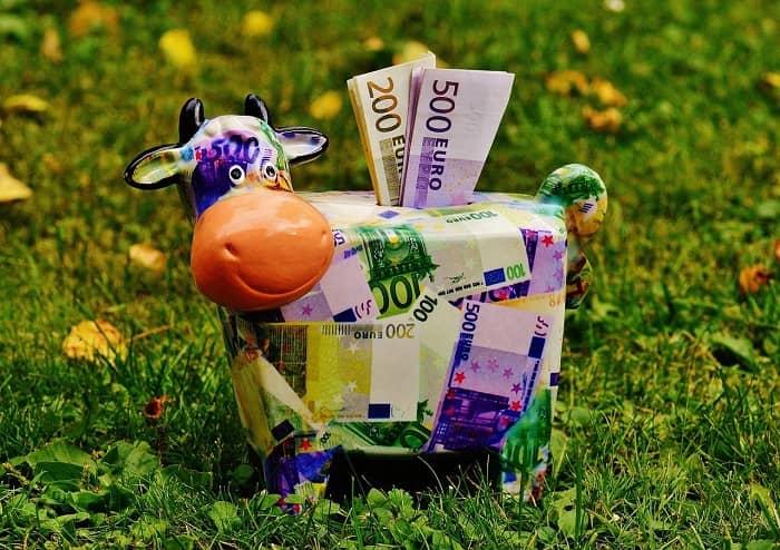 Eine Sparkuh gefüllt mit Geldscheinen steht auf einer Wiese