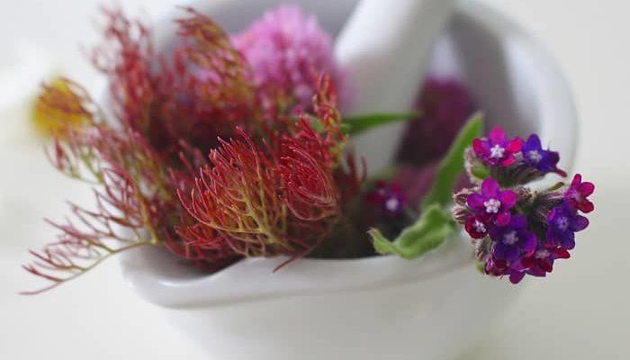 Naturheilmittel – Wie hilfreich sind diese?