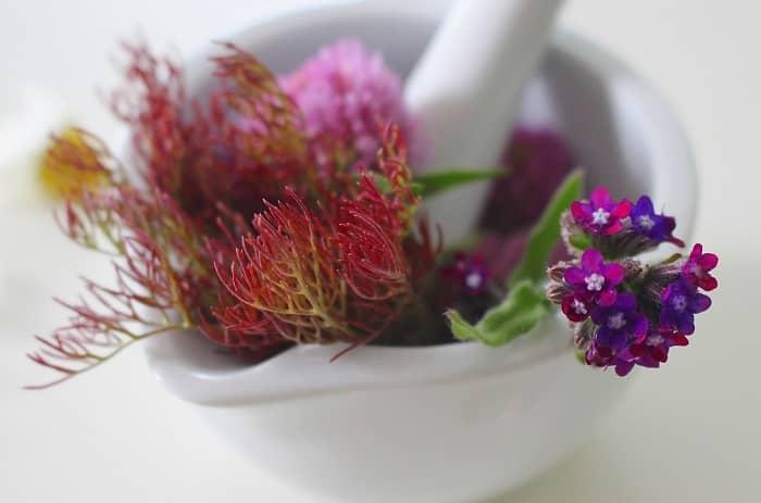 Eine Schale mit einem Mörser, in dem sich verschiedene Blumen und Pflanzen befinden