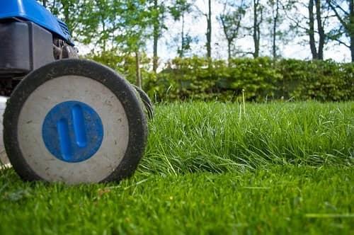 Ein Rasenmäher mäht gerade das Gras