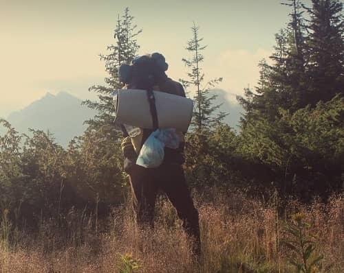 Ein Wanderer steht vor einem Wald und sieht dazwischen verschiedene Berge
